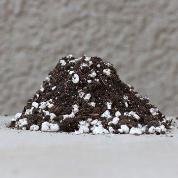 Organic Seedling Mix